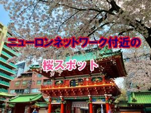 桜スポットアイキャッチ